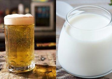 Tác dụng của uống bia với sữa ông thọ, sữa đặc?