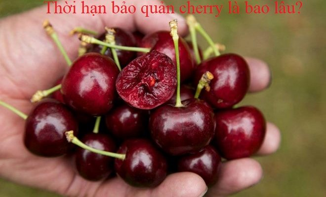 Cherry để được bao lâu mà không bị hư hỏng