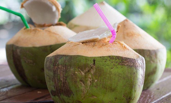 Uống nước dừa thường xuyên có bị loãng máu không? Có hại gì không?