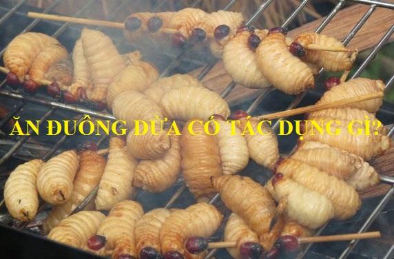 Ăn đuông dừa có tác dụng gì? có tốt không?