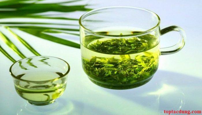 Uống nhiều nước lá đinh lăng có tốt không? Có tác dụng gì?