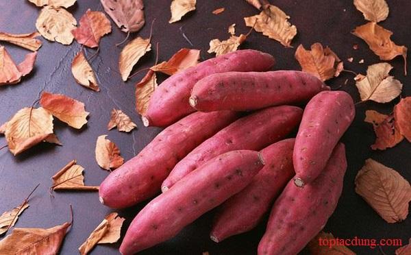100g, 1 củ khoai lang bao nhiêu calo? Ngày ăn mấy củ là tốt?