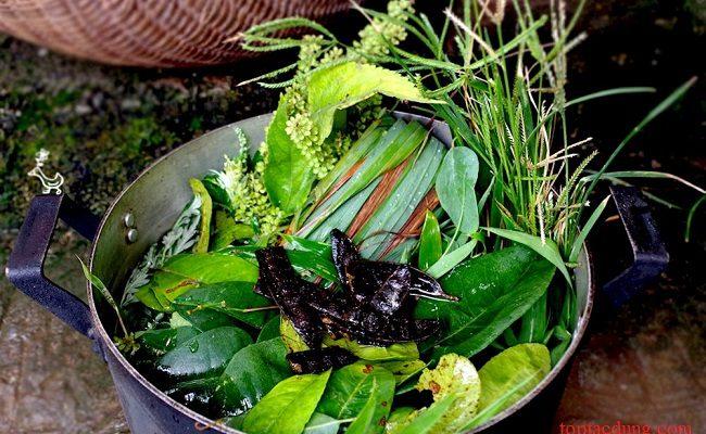 7 loại lá cây dùng để xông giải mỏi, trị cảm cúm hiệu quả nên dùng