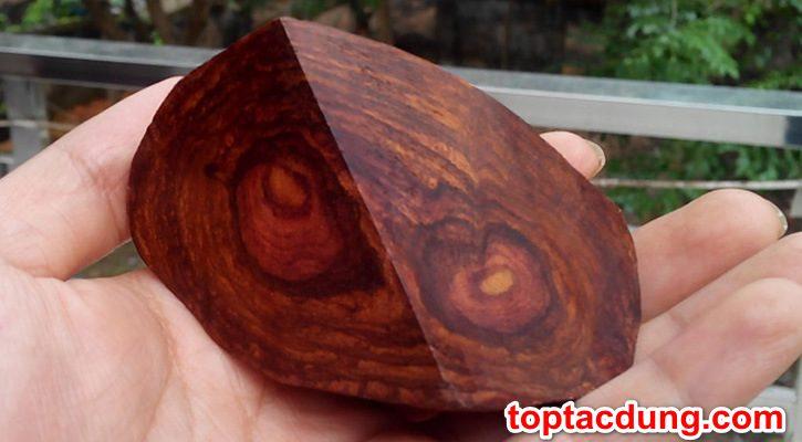 Cây gỗ sưa có tác dụng gì? Có tốt không?