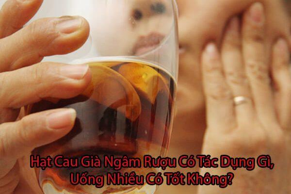 Hạt cau già ngâm rượu có tác dụng gì, uống nhiều có tốt không?