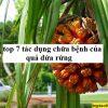 Top 7 tác dụng chữa bệnh của quả dứa rừng