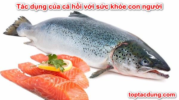 100g, 200g Cá Hồi Chứa Bao Nhiêu Calo, Protein? Ăn Nhiều Mập Không?