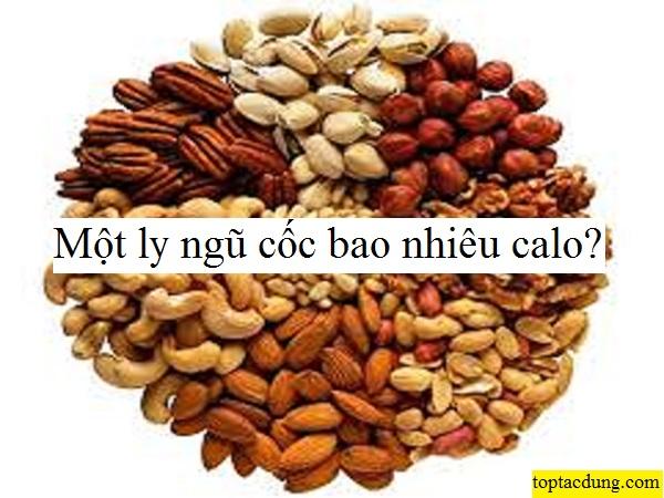 1-ly-ngu-coc-bao-nhieu-calo