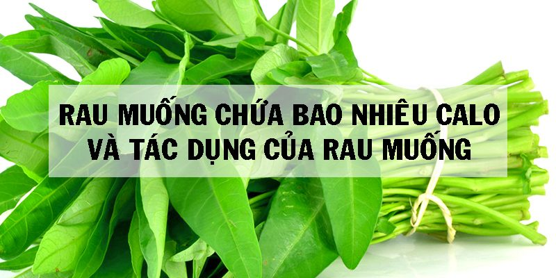 Ăn 1 Bó Rau Muống Chứa Bao Nhiêu Calo, Năng Lượng