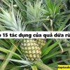 Top 15 tác dụng của quả dứa rừng, dứa dại