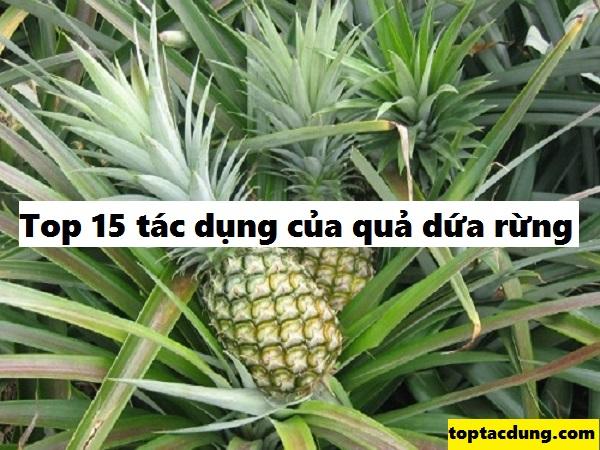 qua-dua-rung