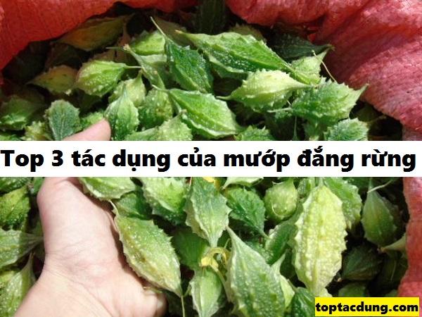 qua-muop-dang-rung