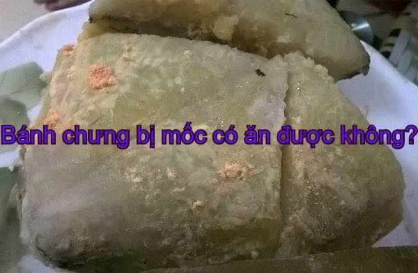 banh-chung-bi-moc-co-an-duoc-khong