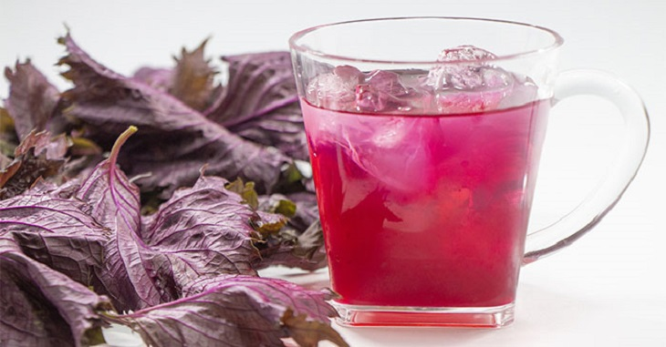 Top 10 tác dụng nước ép lá tía tô đối với sức khỏe
